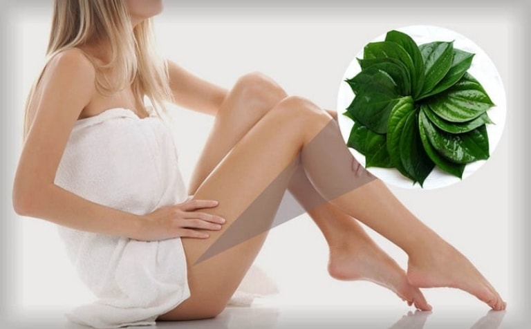 Lá trầu không có công dụng hữu hiệu trong việc điều trị viêm âm đạo