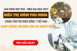 Hiện đại hóa YHCT với bài thuốc Phụ Khang Tán